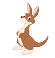 Cartoon Kangaroo vector image vector image