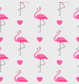 Colorful pink flamingo seamless pattern background