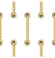 golden vertical straped ropes with metal eyelets vector image vector image
