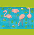 group pink flamingos vector image