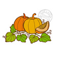 hand drawn vegetable vector image