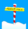 north pole vector image