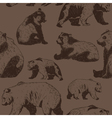 pattern with wild bear vector image
