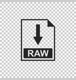 raw file document icon download raw button icon vector image