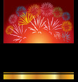 group of different festive fireworks vector image
