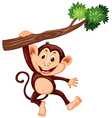 Cute monkey hanging on the branch vector image vector image