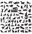 different set of silhouettes of cats vector image vector image