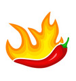 hot red pepper icon burning spicy paprika vector image