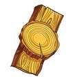 piece of wood vector image