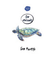sea turtle watercolor vector image