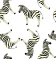 seamless zebra pattern on a white background vector image vector image
