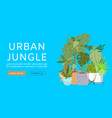 urban jungle web template vector image vector image