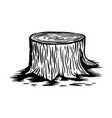 wood stump in engraving style design element for vector image