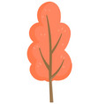 wooden plant with foliage autumn tree vector image