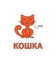 cartoon cat flashcard for children vector image vector image