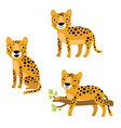 cute leopard character set vector image vector image