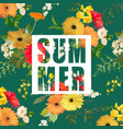 flowers summer graphic flower background vector image vector image
