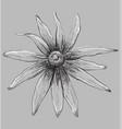 grey flower 5 vector image vector image