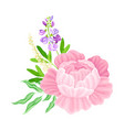 purple lush peony flower arranged with garden vector image vector image