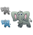 cute elephant baby isolated on white background fo vector image