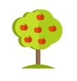 Apple Tree in flat style vector image vector image