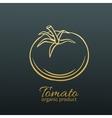 badge tomato vector image vector image
