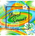 Brazil summer travel background eps 10 vector image