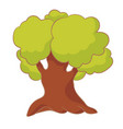 cartoon tree with green leaves oak isolated on vector image vector image