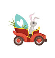 cute bunny driving vintage red car decorated with vector image vector image