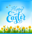 easter blossom with daffodils vector image vector image
