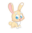 easter rabbit cartoon isolated vector image