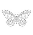 hand drawn butterfly black and white vector image