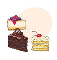hand drawn desserts - pieces of cheesecake and vector image vector image
