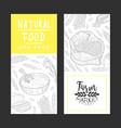 natural food gmo free banner templates set vector image vector image
