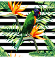 parrots exotic floral seamless background vector image