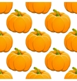 Pumpkin seamless pattern on white vector image vector image