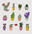 Set cute cartoon cactus and succulents