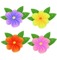 Spring Fresh Colorful Flowers vector image vector image
