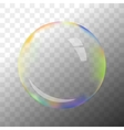 Transparent soap bubble vector image vector image