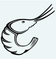 Boiled shrimp sketch vector image