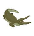 crocodile dangerous predator reptile nile vector image vector image