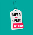 tag sale buy 1 get 1 free buy now image vector image