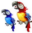 Two colorful blue and red tropical parrots vector image vector image