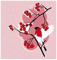 Winter bullfinch on a branch of red rowan vector image