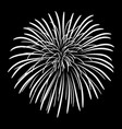 fireworks on a black sky background vector image vector image