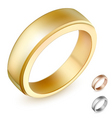 gold ring vector image