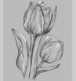 grey flower 10 vector image vector image