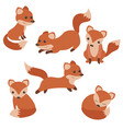 set of cute foxes set of cute foxes vector image