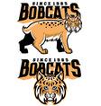 bobcat mascot vector image vector image