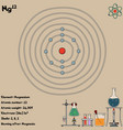infographic element magnesium vector image vector image